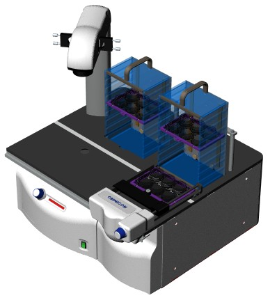 Tumor Colony Analyzer with Stacker